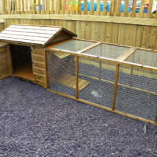 Duck Pen Enclosure & 6ft Run