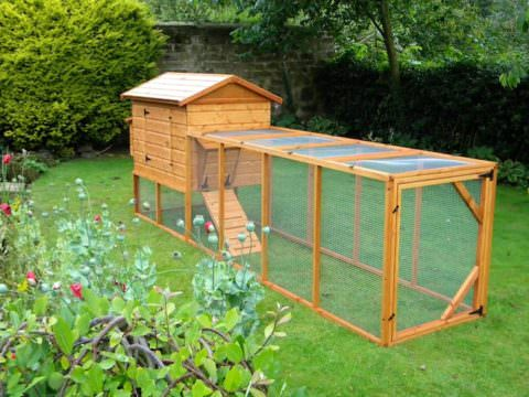 Long Chicken Enclosure (external Nest Box)