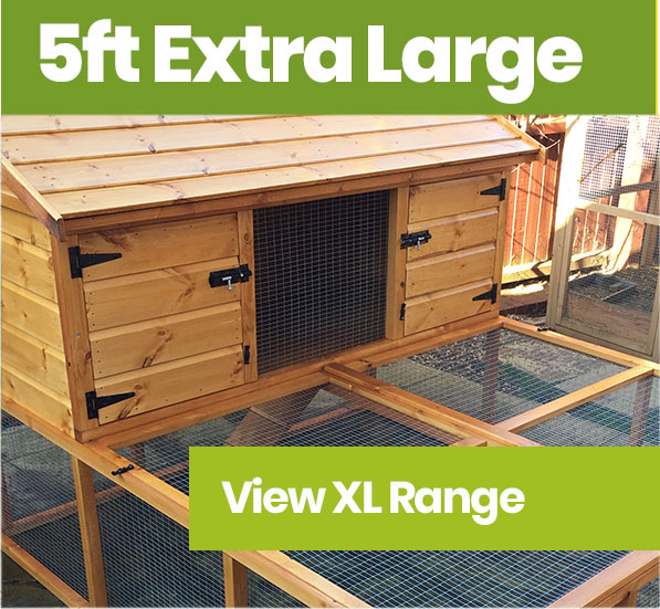 Timber For A Rabbit Hutch – Is Pressure Treated Wood Safe For Rabbits To Chew?